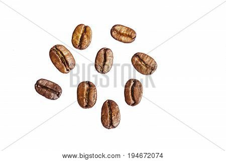 Nine roasted coffee arabica beans isolated on white background with copyspace