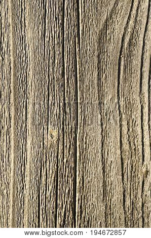 texture background old rough unpainted wood close up