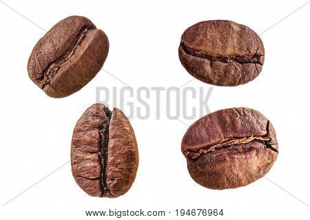 Set of four different roasted arabica coffee beans close-up isolated on white background