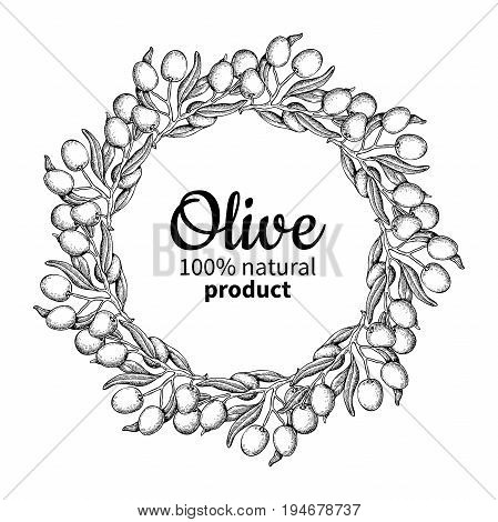 Olive wreath. Hand drawn vector illustration of branch with food and leaves. Isolated circle border drawing on white background. Engraved plant. Great for menu, banner, oil label, logo, flyer, beauty, spa, cosmetic ingredient.