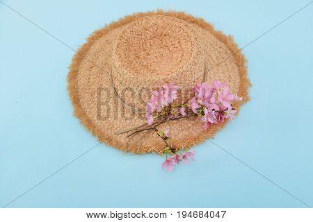 Pink cherry blossom sakura and hat blue background