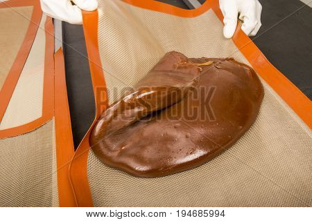 Artisanal production of caramel toffee sweets butterscotch candies. Woman with white lab coat blouse stretching moving extending the sugar pastry to do butterscotch candies sweet of France
