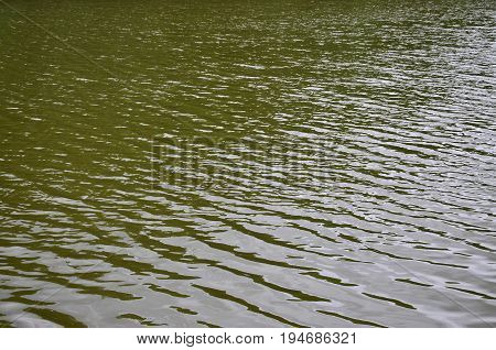 The Texture Of Dark River Water Under The Influence Of Wind, Imprinted In Perspective. Horizontal Im
