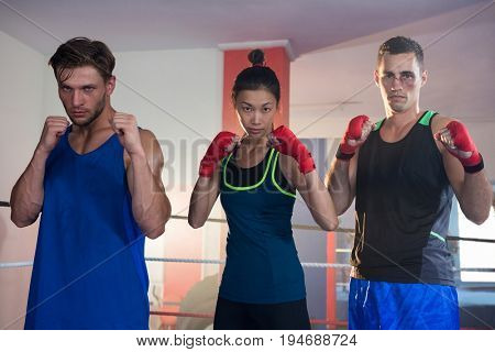 Portrait of confident female amidst male boxers standing in fighting stance at fitness studio