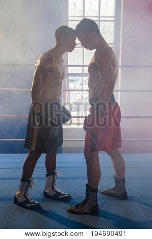 Boxer standing face to face in boxing ring at fitness studio