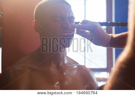 Trainer applying cream on man face in boxing ring