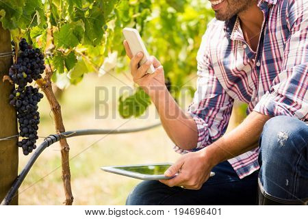 Midsection of young man using phone while holding tablet at vineyard
