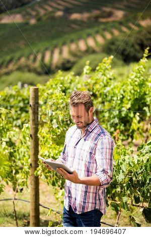 Smiling man using phone and tablet while standing at vineyard on sunny day