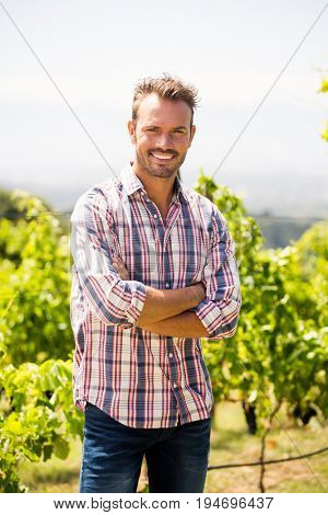 Portrait of smiling young man with arms crossed at vineyard