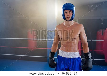 Portrait of confident shirtless boxer wearing protective sportsgear standing in boxing ring