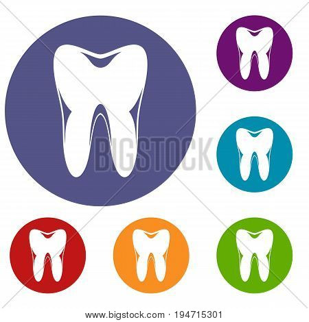 Human tooth icons set in flat circle reb, blue and green color for web