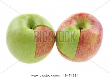Genetically modified apple concept. White background studio image.