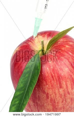 White background vertical high resolution image of a genetically modified apple concept