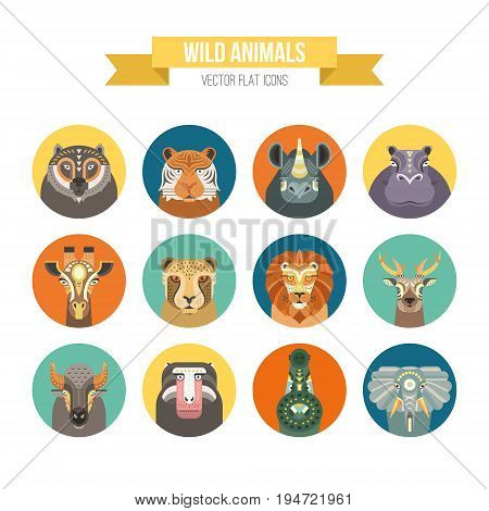 Collection of african animals made in modern flat style vector. Lion, rhino, alligator and other cute animals. Geometrical and clean vector.