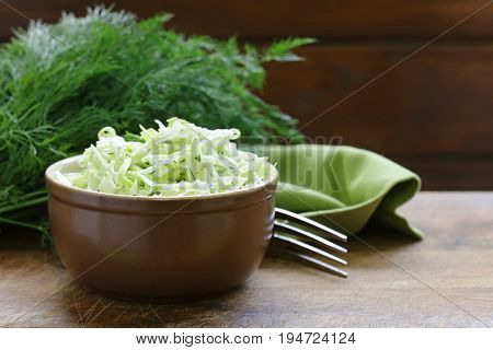 Cabbage Cole Slaw , salad with dill