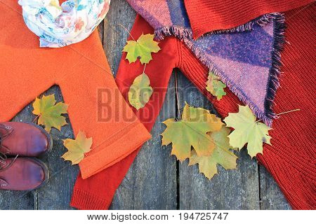 stylish fashion set of woman's clothes and accessories . Women's autumn outfit on wooden background .