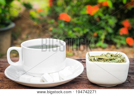 Stevia leaves with a cup stevia infusion on nature background