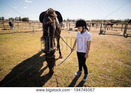 Girl holding the reins of a horse in the ranch on a sunny day