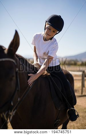 Rider girl caressing the horse in the ranch on a sunny day