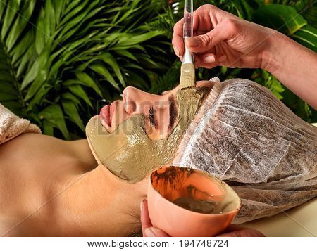 Mud facial mask of woman in spa salon. Massage with clay face in therapy room. Applying beautician with bowl therapeutic procedure green plants background as symbol of naturalness cosmetic components.