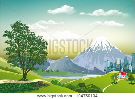Countryside in vector form. Megapolis mountains in the background. Cottage on the shore of a mountain lake. Green tree on a hill. Vector illustration