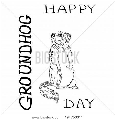 Groundhog day with text. Vector graphic postcard