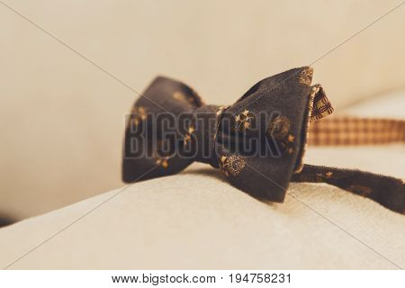 Wedding clothing details, morning of groom. Close-up of brown bow-tie with pattern for bridegroom, nobody, objects, indoors