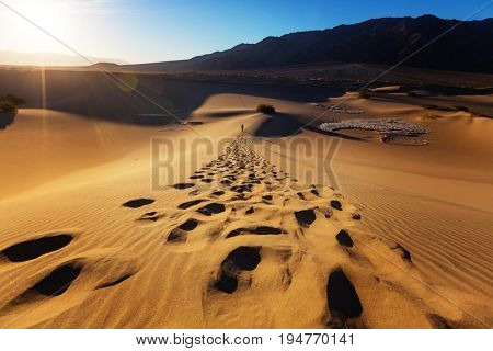 Hiker in sand desert. Sunrise time.