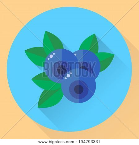 Vector Illustration, Flat Round Icon Blueberries, Bilberry, Blue