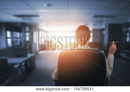 Rear view of business executive holding cigar against table and empty chairs in office