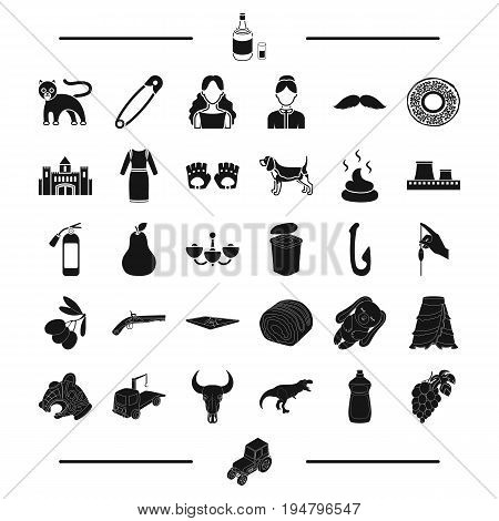 food, transportation, animal and other  icon in black style. appearance, hair, garbage icons in set collection.