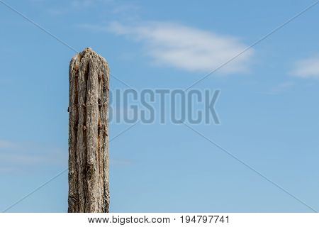 Age and decay. Rotten wood fence post. Decayed eroded and rotting wooden construction isolated against blue sky with copy space. Symbol of old age and decomposition. poster