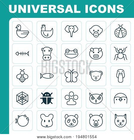Animal Icons Set. Collection Of Ladybird, Toad, Butterflyfish And Other Elements. Also Includes Symbols Such As Poultry, Grizzly, Penguin.