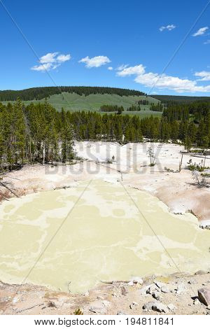 Sulphur Caldron, Yellowstone National Park, is at the edge of one of the most active areas of the parks buried volcano, filling the caldron with sulfuric acid.
