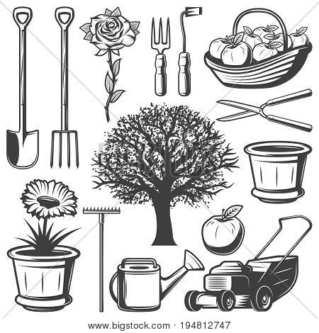 Vintage garden elements collection with agricultural tools flowers tree watering can lawm mower pot apples isolated vector illustration