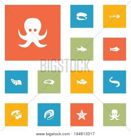 Set Of 12 Sea Icons Set.Collection Of Devilfish, Beefsteak, Shark And Other Elements.