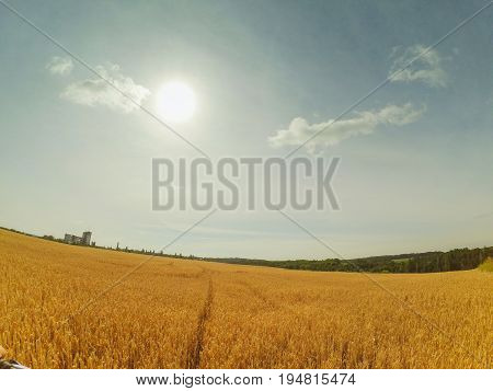 Field sky wide angle Sky clouds sun freedom Horizon background