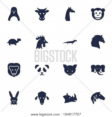 Set Of 16 Zoo Icons Set.Collection Of Trunked Animal, Gecko, Rhinoceros And Other Elements.