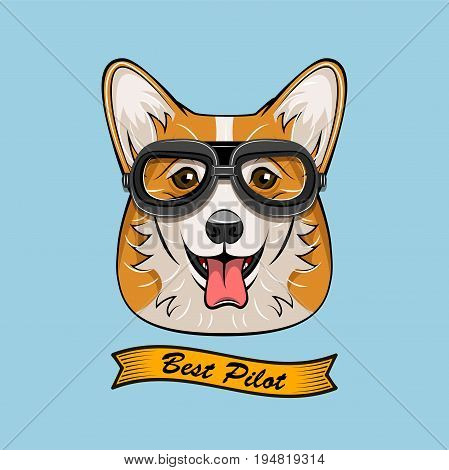 Cute Pilot Corgi Dog Face Traveler Retro Aviator Glasses. Best Pilot Ribbon. Vector Illustration Isolated On White Background.