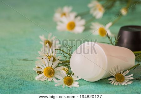Daily body care and hygiene. Roller deodorant and fresh chamomile flowers on a green background. For gentle and sensitive skin.