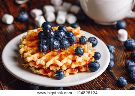 Belgian Waffles on Plate with Fresh Blueberry and Syrup. Some Berries and Marshmallow on Backdrop.