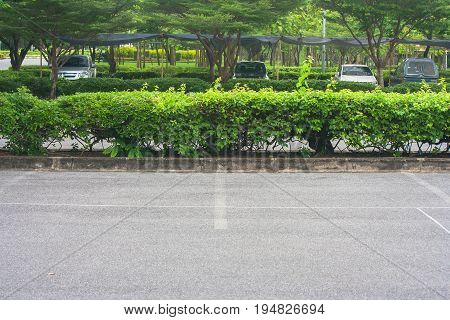 Empty space in parking lot at public park with green bush background.