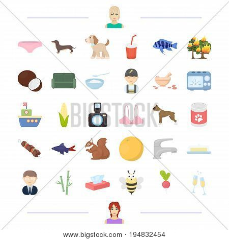 animal, food and other  icon in cartoon style.appearance, product icons in set collection.