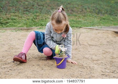 Little girl playing in a sand-box on a cloudy summer day She is planting a flower in a toy bucket.