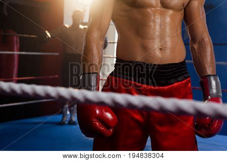 Boxers standing in boxing ring at fitness studio