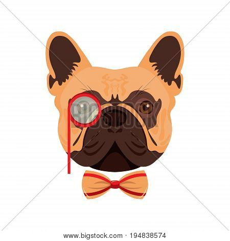 Vector illustration of a funny fashionable pug with a bow and monocle. On white isolated background.