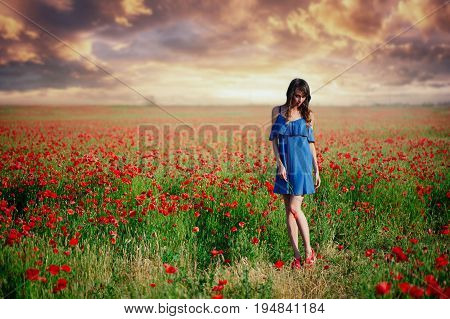 Beauty Woman In A Blue Dress Running A Poppy Field At Sunset, Cleanliness And Innocence, Unity With
