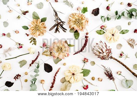 Dried flowers texture pattern: beige peony protea eucalyptus branches roses on white background. Flat lay top view. Floral background