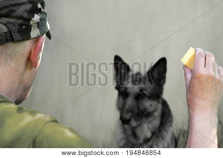 Man in military uniform with a piece of cheese training a dog filtered cropped photo
