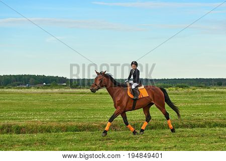Pretty little girl jockey riding a horse across country in professional outfit